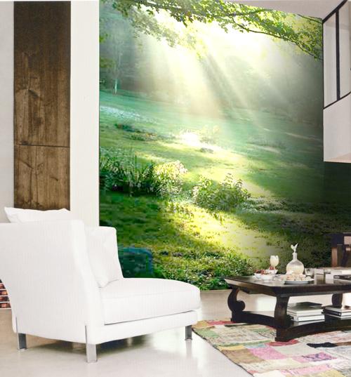 Murales paisajes pradera y luz - Decorar las paredes del salon ...